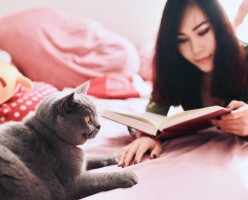 Katzensitterin liest ein Buch