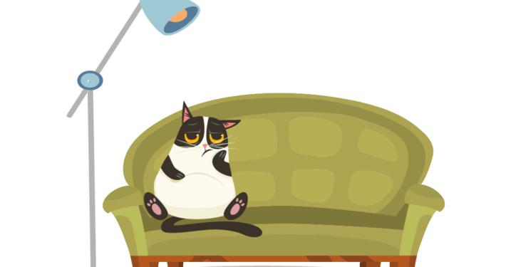 Kazte sitzt traurig im Sessel